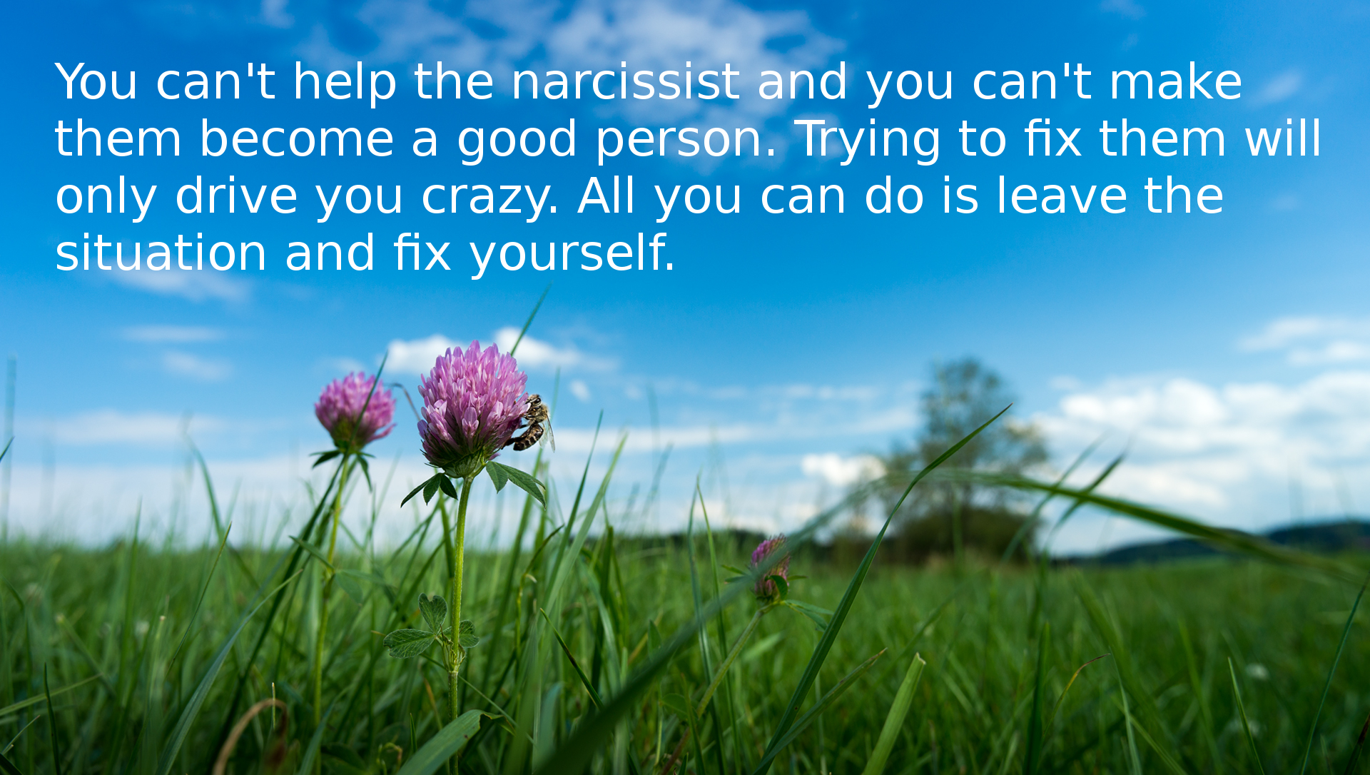 Can you change a narcissist
