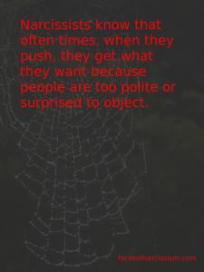 narcweb2